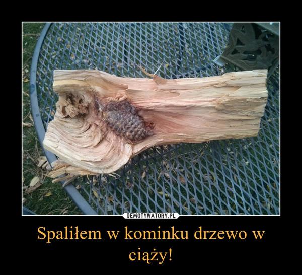 Spaliłem w kominku drzewo w ciąży! –