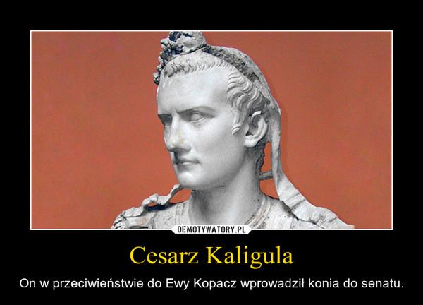 Cesarz Kaligula – On w przeciwieństwie do Ewy Kopacz wprowadził konia do senatu.