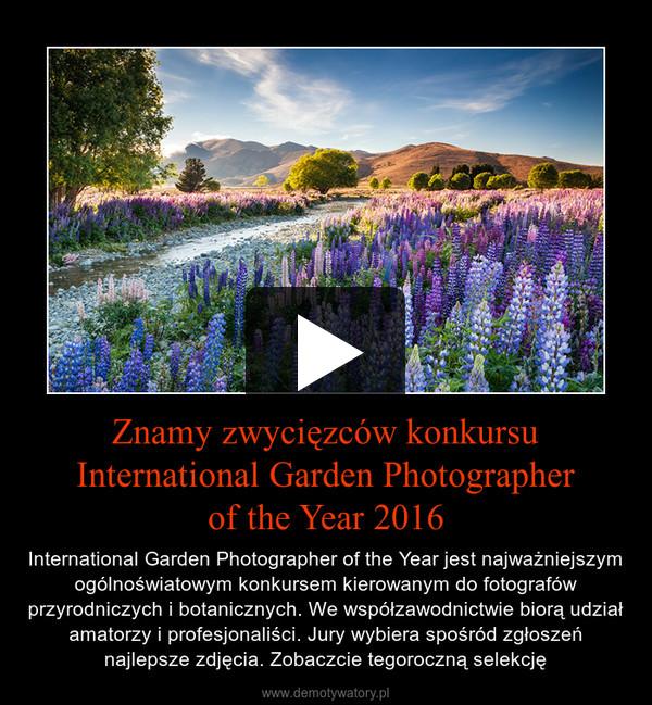 Znamy zwycięzców konkursu International Garden Photographerof the Year 2016 – International Garden Photographer of the Year jest najważniejszym ogólnoświatowym konkursem kierowanym do fotografów przyrodniczych i botanicznych. We współzawodnictwie biorą udział amatorzy i profesjonaliści. Jury wybiera spośród zgłoszeń najlepsze zdjęcia. Zobaczcie tegoroczną selekcję