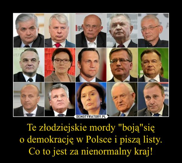 """Te złodziejskie mordy """"boją""""sięo demokrację w Polsce i piszą listy.Co to jest za nienormalny kraj! –"""