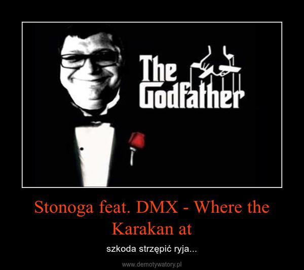 Stonoga feat. DMX - Where the Karakan at – szkoda strzępić ryja...