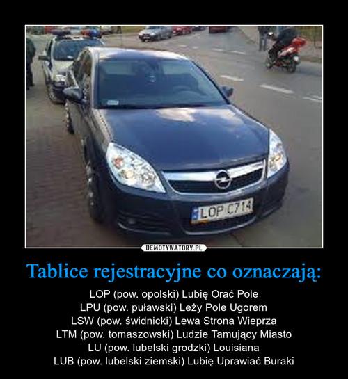 Tablice rejestracyjne co oznaczają: