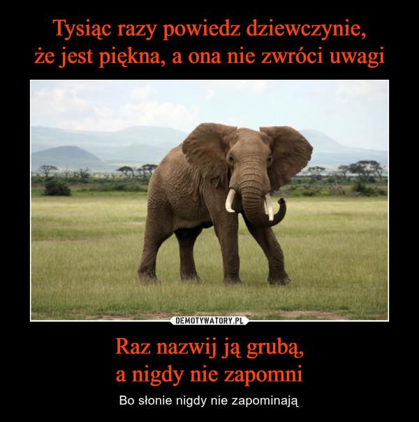 Raz nazwij ją grubą,a nigdy nie zapomni – Bo słonie nigdy nie zapominają