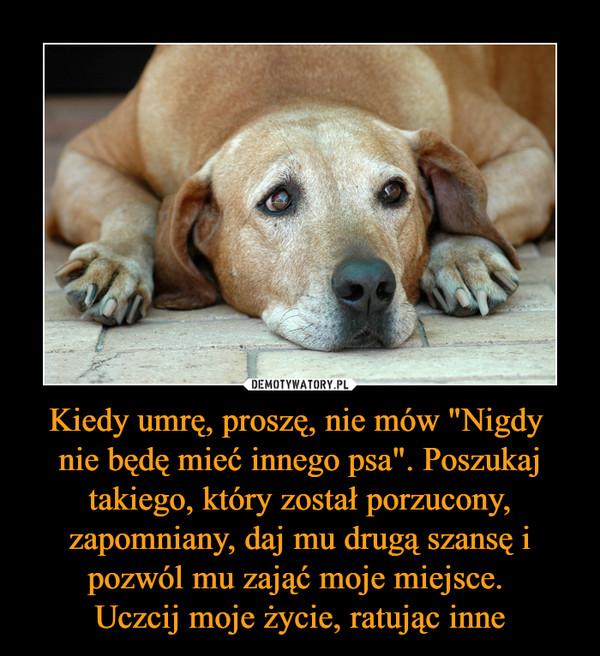 """Kiedy umrę, proszę, nie mów """"Nigdy nie będę mieć innego psa"""". Poszukaj takiego, który został porzucony, zapomniany, daj mu drugą szansę i pozwól mu zająć moje miejsce. Uczcij moje życie, ratując inne –"""