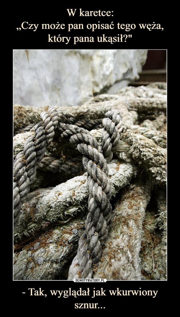 - Tak, wyglądał jak wkurwiony sznur... –