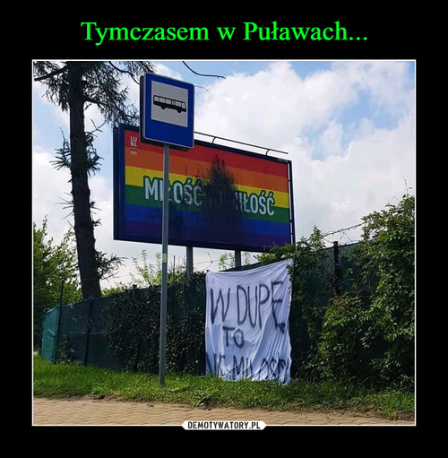 Tymczasem w Puławach...