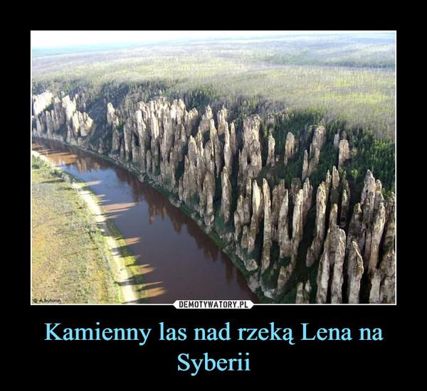 Kamienny las nad rzeką Lena na Syberii –