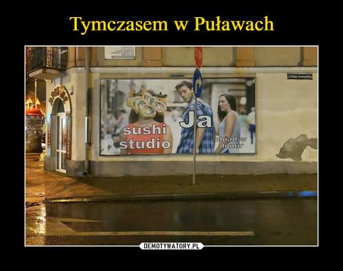 Tymczasem w Puławach