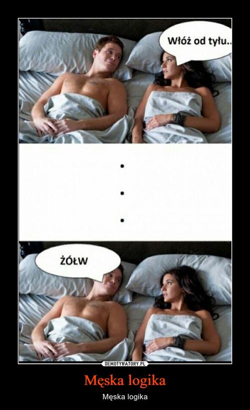 Męska logika