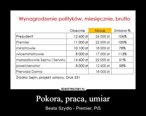Pokora, praca, umiar – Beata Szydło - Premier, PiS