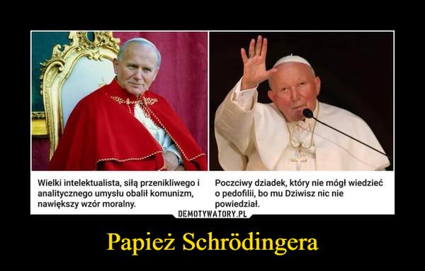 Papież Schrödingera –  Wielki intelektualista, siłą przenikliwego ianalitycznego umysłu obalił komunizm,nawiększy wzór moralny.Poczciwy dziadek, który nie mógł wiedziećo pedofilii, bo mu Dziwisz nic niepowiedział.