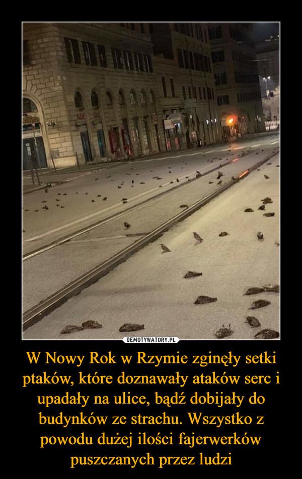 W Nowy Rok w Rzymie zginęły setki ptaków, które doznawały ataków serc i upadały na ulice, bądź dobijały do budynków ze strachu. Wszystko z powodu dużej ilości fajerwerków puszczanych przez ludzi –