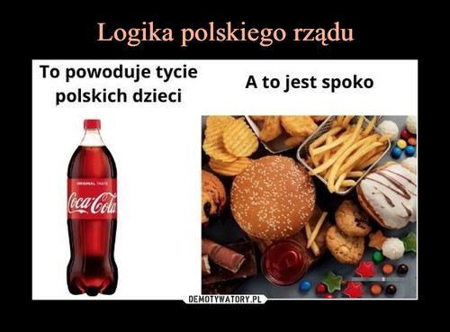 Logika polskiego rządu