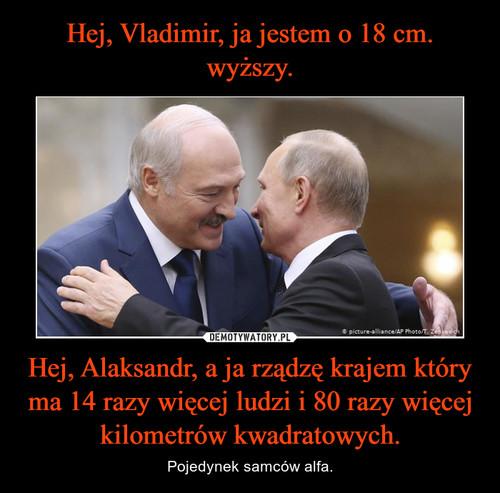 Hej, Vladimir, ja jestem o 18 cm. wyższy. Hej, Alaksandr, a ja rządzę krajem który ma 14 razy więcej ludzi i 80 razy więcej kilometrów kwadratowych.