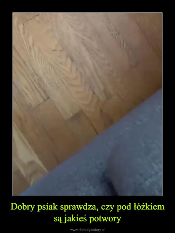 Dobry psiak sprawdza, czy pod łóżkiem są jakieś potwory –