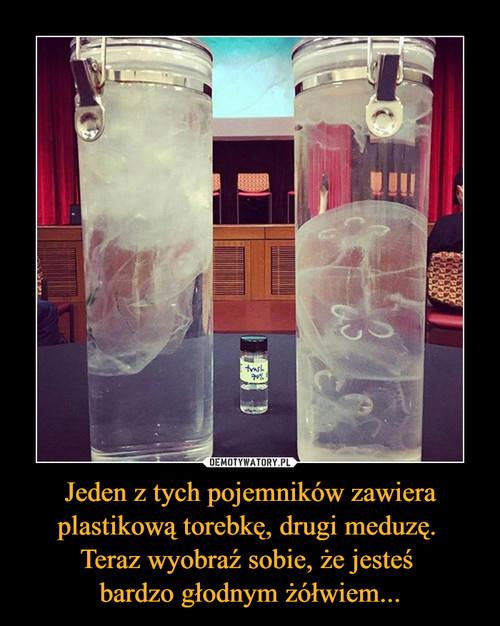 Jeden z tych pojemników zawiera plastikową torebkę, drugi meduzę.  Teraz wyobraź sobie, że jesteś  bardzo głodnym żółwiem...