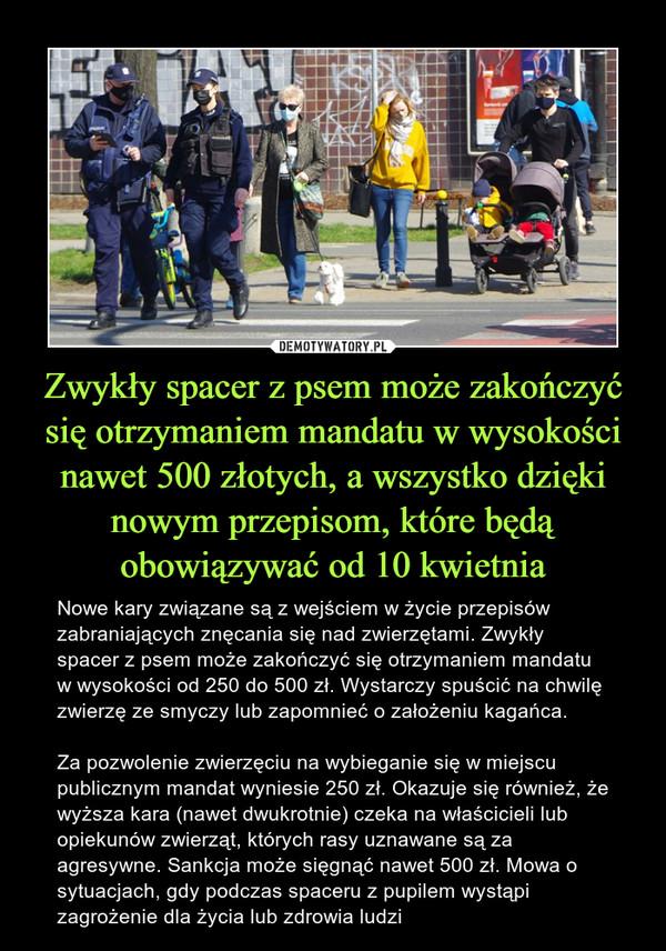 Zwykły spacer z psem może zakończyć się otrzymaniem mandatu w wysokości nawet 500 złotych, a wszystko dzięki nowym przepisom, które będą obowiązywać od 10 kwietnia – Nowe kary związane są z wejściem w życie przepisów zabraniających znęcania się nad zwierzętami. Zwykły spacer z psem może zakończyć się otrzymaniem mandatu w wysokości od 250 do 500 zł. Wystarczy spuścić na chwilę zwierzę ze smyczy lub zapomnieć o założeniu kagańca.Za pozwolenie zwierzęciu na wybieganie się w miejscu publicznym mandat wyniesie 250 zł. Okazuje się również, że wyższa kara (nawet dwukrotnie) czeka na właścicieli lub opiekunów zwierząt, których rasy uznawane są za agresywne. Sankcja może sięgnąć nawet 500 zł. Mowa o sytuacjach, gdy podczas spaceru z pupilem wystąpi zagrożenie dla życia lub zdrowia ludzi
