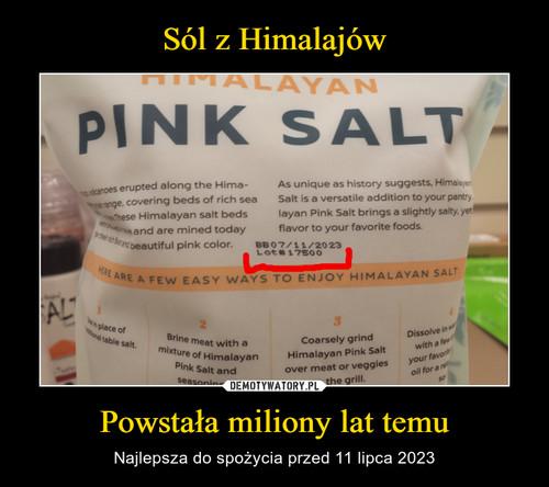 Sól z Himalajów Powstała miliony lat temu