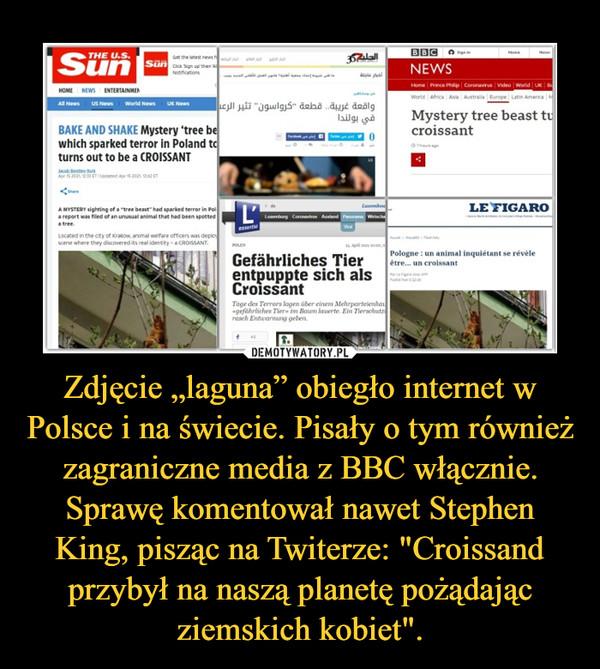 """Zdjęcie """"laguna"""" obiegło internet w Polsce i na świecie. Pisały o tym również zagraniczne media z BBC włącznie. Sprawę komentował nawet Stephen King, pisząc na Twiterze: """"Croissand przybył na naszą planetę pożądając ziemskich kobiet"""". –"""