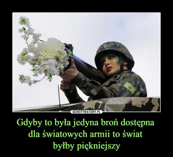 Gdyby to była jedyna broń dostępna dla światowych armii to świat byłby piękniejszy –