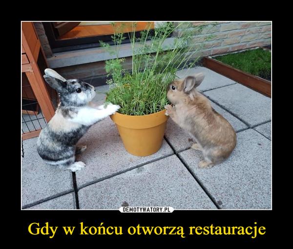 Gdy w końcu otworzą restauracje –