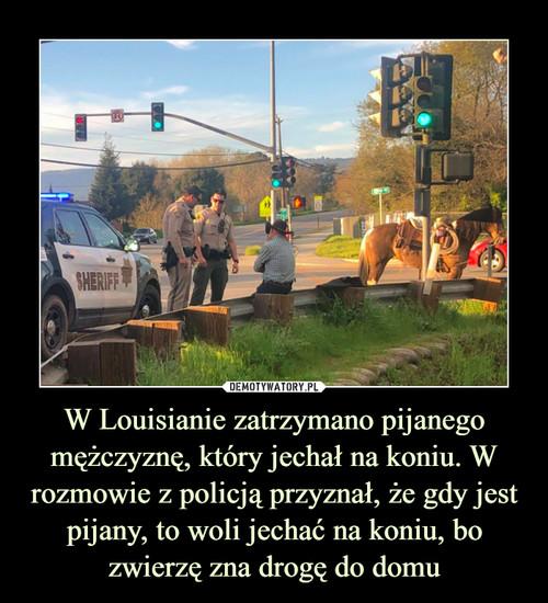 W Louisianie zatrzymano pijanego mężczyznę, który jechał na koniu. W rozmowie z policją przyznał, że gdy jest pijany, to woli jechać na koniu, bo zwierzę zna drogę do domu