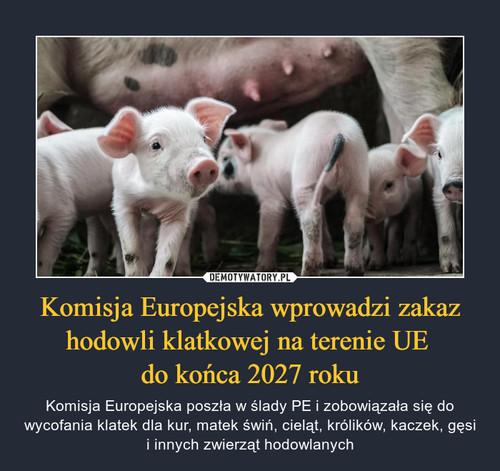 Komisja Europejska wprowadzi zakaz hodowli klatkowej na terenie UE  do końca 2027 roku