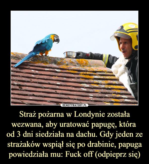 Straż pożarna w Londynie została wezwana, aby uratować papugę, która od 3 dni siedziała na dachu. Gdy jeden ze strażaków wspiął się po drabinie, papuga powiedziała mu: Fuck off (odpieprz się) –