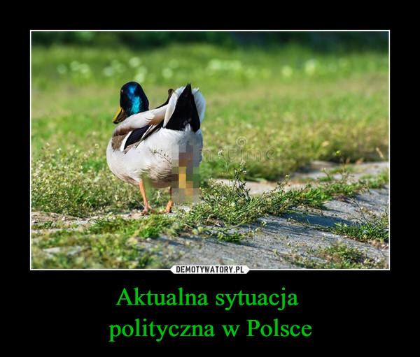 Aktualna sytuacja polityczna w Polsce –