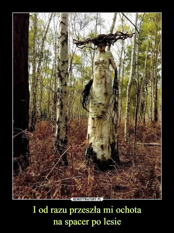 I od razu przeszła mi ochotana spacer po lesie –