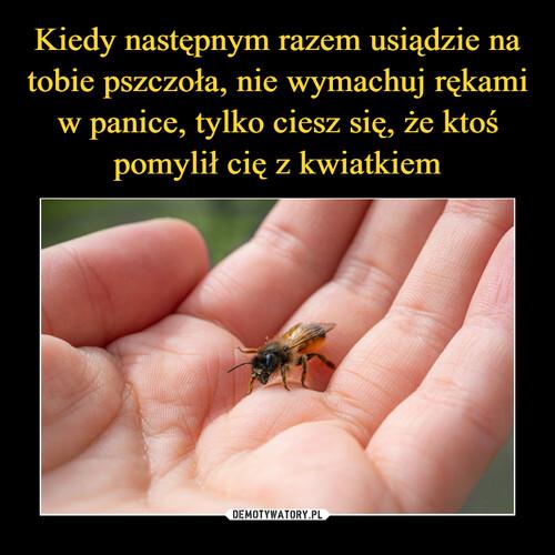Kiedy następnym razem usiądzie na tobie pszczoła, nie wymachuj rękami w panice, tylko ciesz się, że ktoś pomylił cię z kwiatkiem