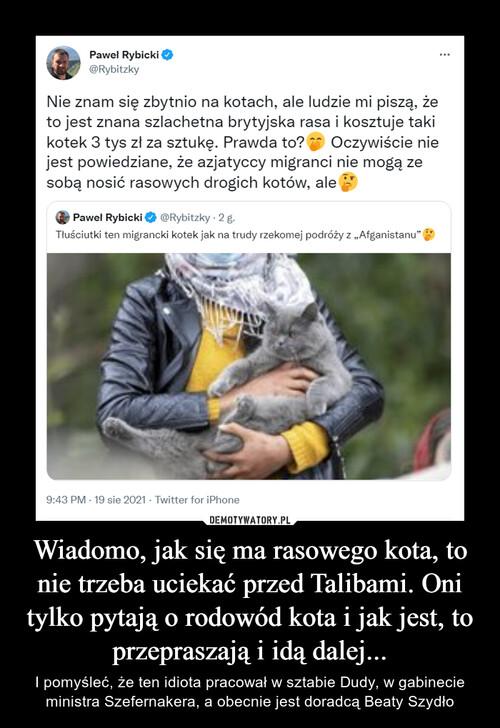 Wiadomo, jak się ma rasowego kota, to nie trzeba uciekać przed Talibami. Oni tylko pytają o rodowód kota i jak jest, to przepraszają i idą dalej...
