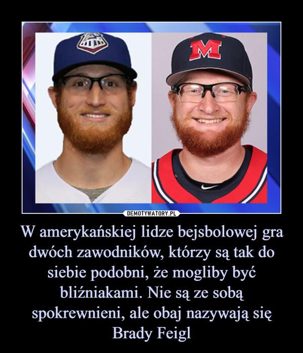 W amerykańskiej lidze bejsbolowej gra dwóch zawodników, którzy są tak do siebie podobni, że mogliby być bliźniakami. Nie są ze sobą spokrewnieni, ale obaj nazywają się Brady Feigl –