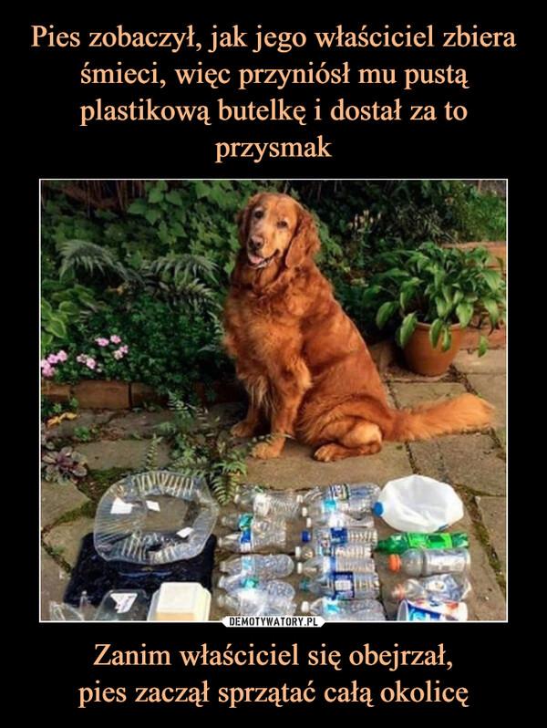 Zanim właściciel się obejrzał,pies zaczął sprzątać całą okolicę –