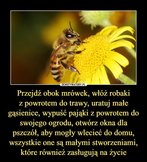 Przejdź obok mrówek, włóż robaki z powrotem do trawy, uratuj małe gąsienice, wypuść pająki z powrotem do swojego ogrodu, otwórz okna dla pszczół, aby mogły wlecieć do domu, wszystkie one są małymi stworzeniami, które również zasługują na życie