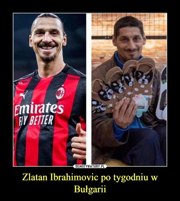 Zlatan Ibrahimovic po tygodniu w Bułgarii –