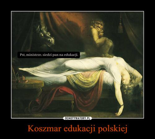 Koszmar edukacji polskiej