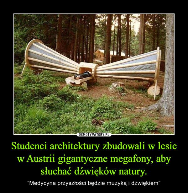 """Studenci architektury zbudowali w lesie w Austrii gigantyczne megafony, aby słuchać dźwięków natury. – """"Medycyna przyszłości będzie muzyką i dźwiękiem"""""""
