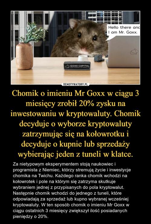Chomik o imieniu Mr Goxx w ciągu 3 miesięcy zrobił 20% zysku na inwestowaniu w kryptowaluty. Chomik decyduje o wyborze kryptowaluty zatrzymując się na kołowrotku i decyduje o kupnie lub sprzedaży wybierając jeden z tuneli w klatce.