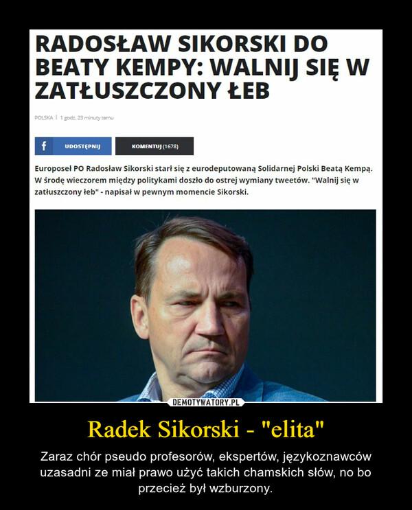 """Radek Sikorski - """"elita"""" – Zaraz chór pseudo profesorów, ekspertów, językoznawców uzasadni ze miał prawo użyć takich chamskich słów, no bo przecież był wzburzony."""